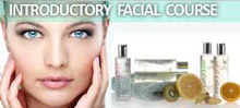 Introductory Facial Course